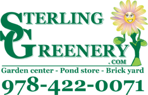 Sterling Greenery Logo